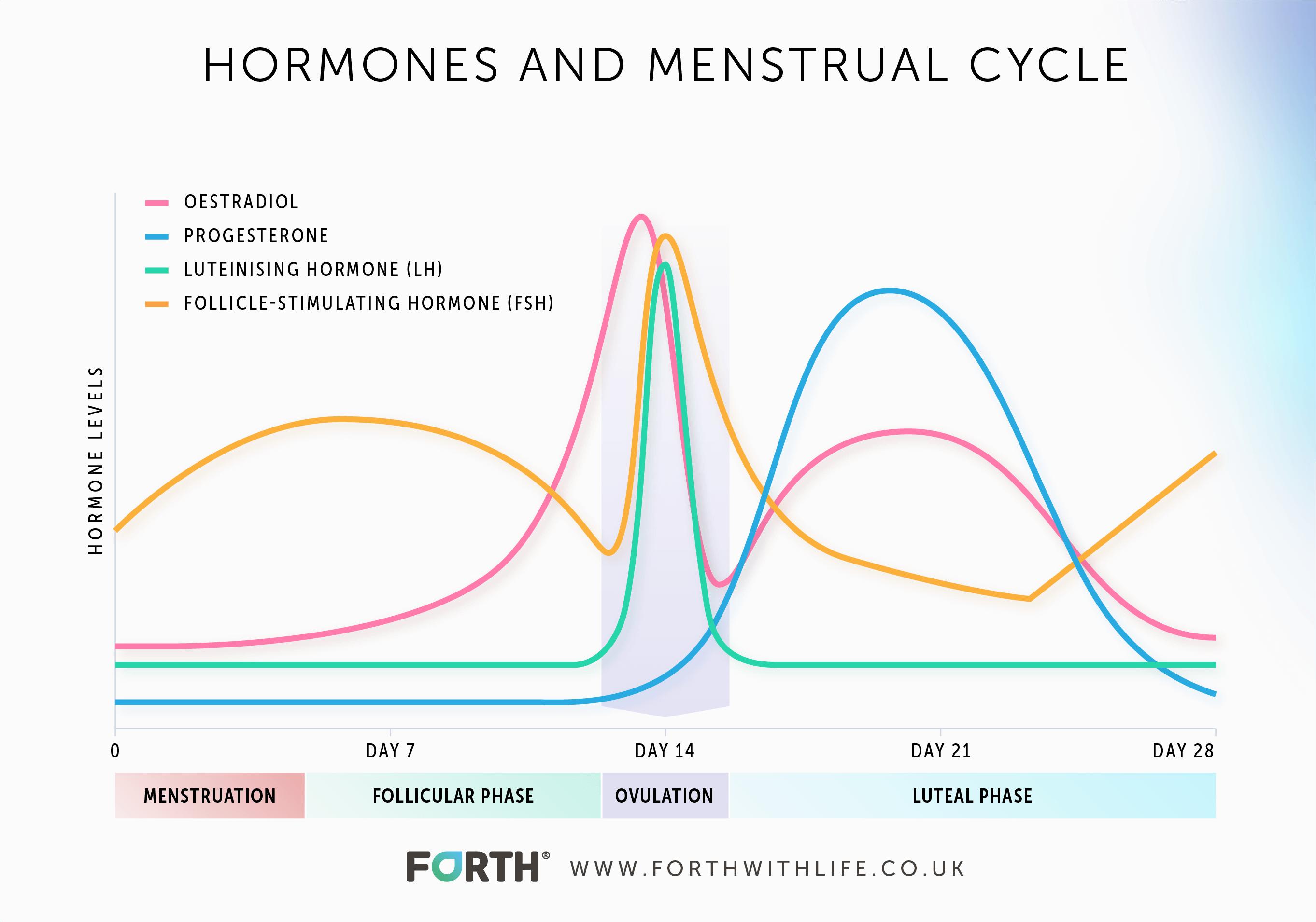 Menstrual Cycle Graph